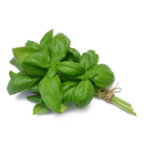 Organic Basil-Pot-1 Kg