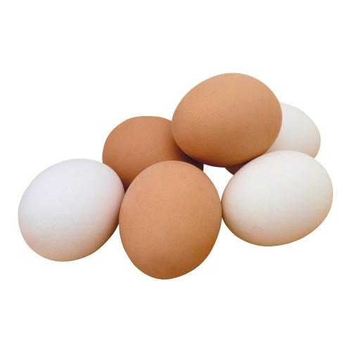 Organic Eggs-Per Piece