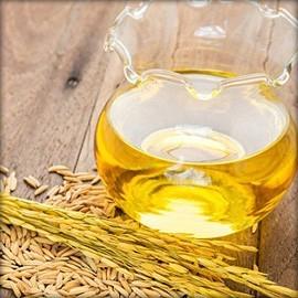 Rice / Oil / Noodles / Flour / Pulses
